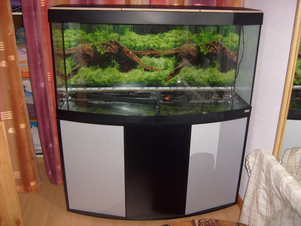 neuwertiges aquarium mit panoramascheibe unterschrank abdeckung mit. Black Bedroom Furniture Sets. Home Design Ideas